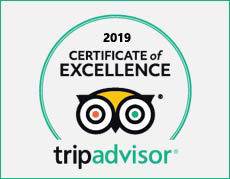 nesa sanur tripadvisor of excellence